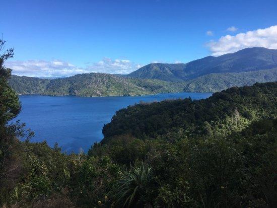 Picton, New Zealand: photo8.jpg