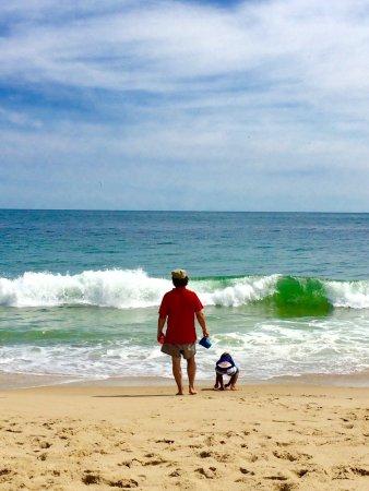 Coast Guard Beach: photo2.jpg
