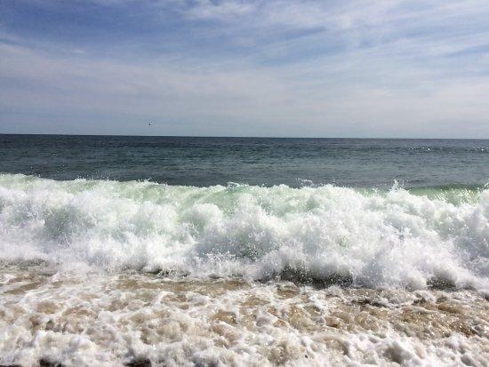 Coast Guard Beach: photo3.jpg