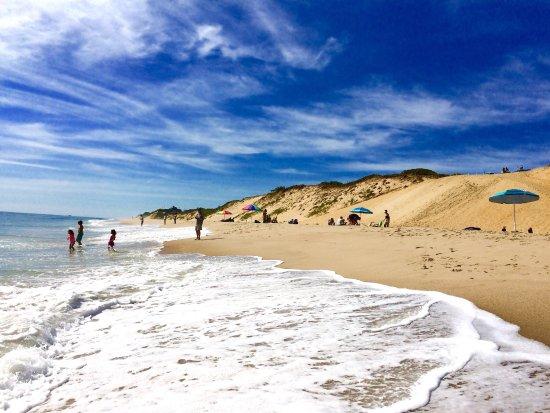 Coast Guard Beach: photo8.jpg