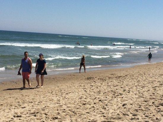 Coast Guard Beach: photo9.jpg