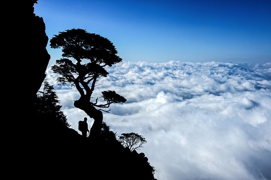 Wenshan, Ταϊπέι: See the sea of clouds from any number of high mountain vistas.