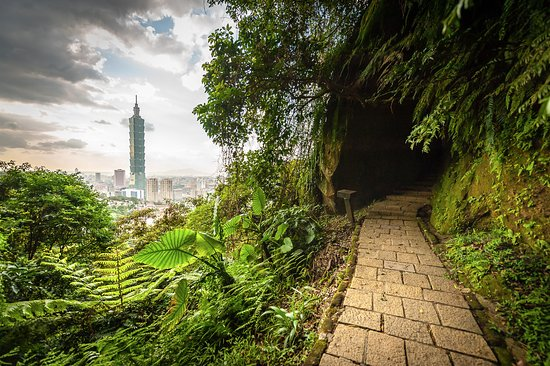 Taiwan Adventures: Find secret locations near well known trails such as this one on Elephant Mountain.