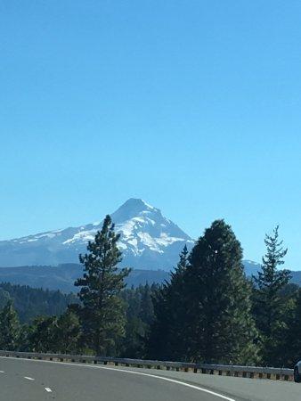 Mount Hood: photo1.jpg