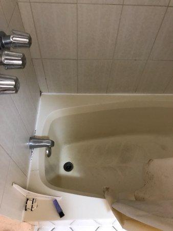 Hotel Corona Plaza Rosarito: Nasty nasty nasty 😫