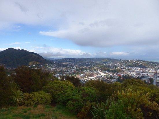 Nelson, New Zealand: photo3.jpg