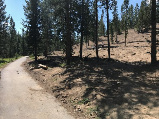 Polaris, MT: Looking up at the digging site from the paved path.