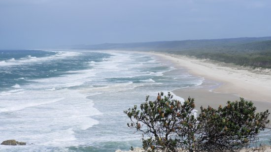 Point Lookout, Australia: この日は風が強かったです