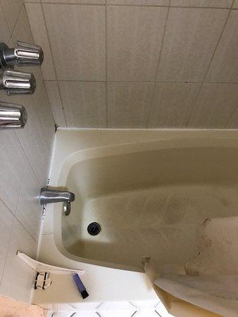 皇冠廣場飯店張圖片