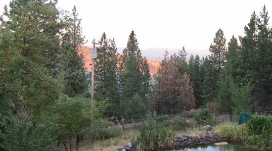 Whitebird Summit Ranch: Off the upper deck - great place to enjoy the evening