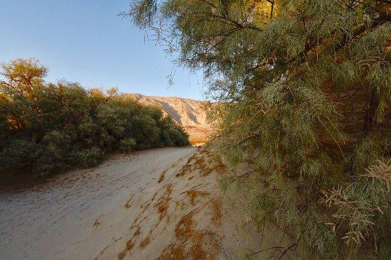Borrego Springs, Καλιφόρνια: Mountain scene