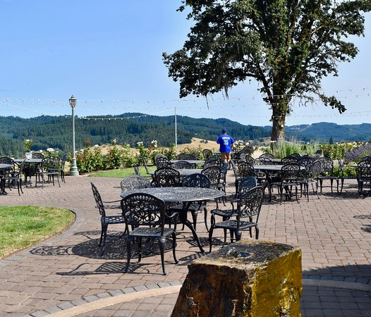 Eugene, OR: Beautiful area to taste or picnic