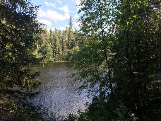 Oulanka National Park, Finlândia: photo0.jpg