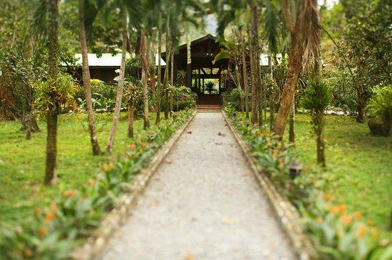 The Lodge and Spa at Pico Bonito: Entrance