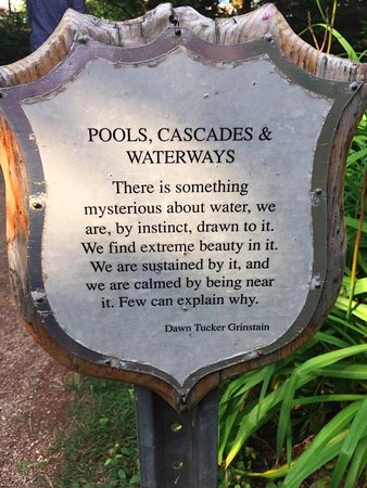 Haunted Mansion: Little details in the garden.