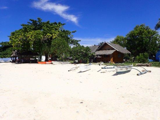 Balicasag Island, Filipinas: 照片3