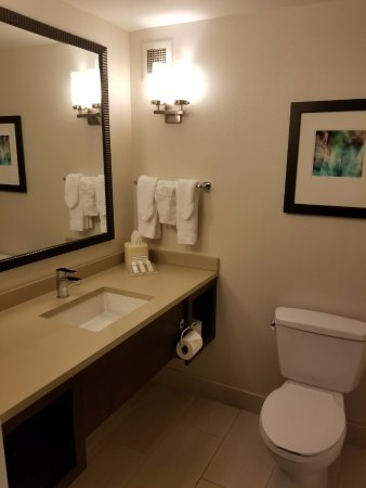 Hilton Garden Inn Chicago Downtown/Magnificent Mile: Decent bahroom