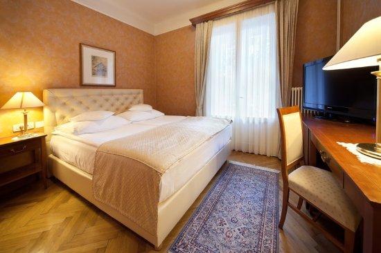 Grand Hotel Toplice: Single Lake View Room