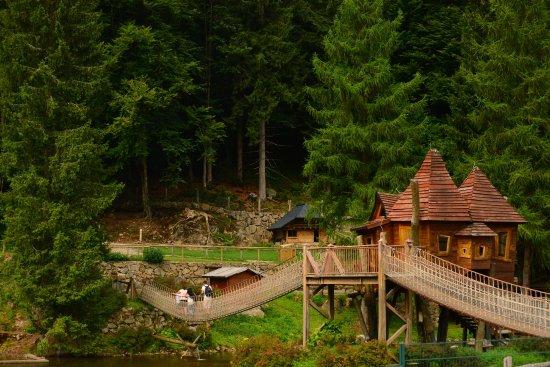 Hébergements spéciaux à Oberried