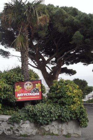 Bilde fra Yalta Municipality