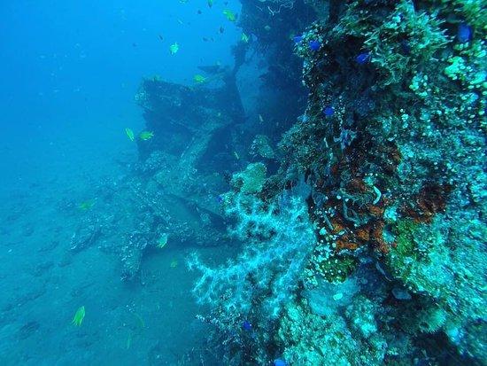 Туламбен, Индонезия: photo0.jpg