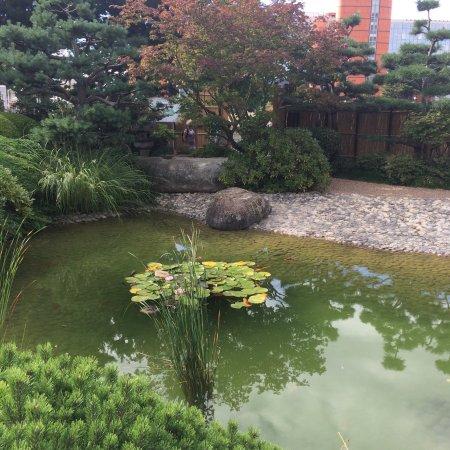 jardin japonais photo3jpg - Jardin Japonais Le Havre