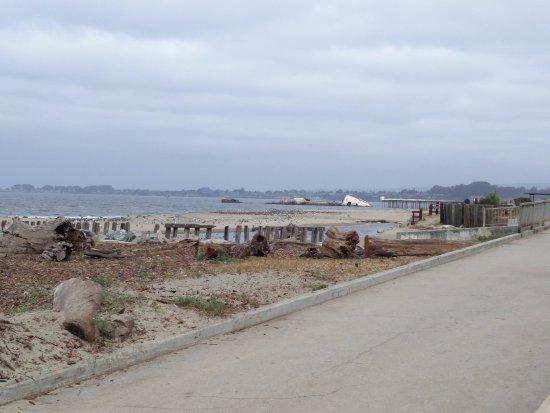 Aptos, CA: View looking West