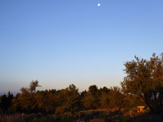 Вильмустоссу, Франция: Early morning from my bedroom window