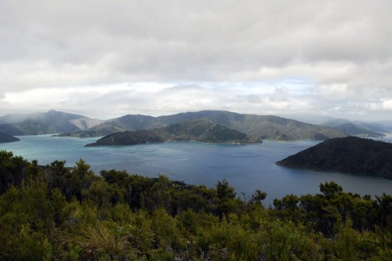 Arthurs Bay, Neuseeland: View From Look Out