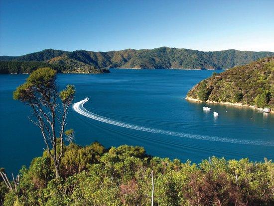 Arthurs Bay, Neuseeland: View