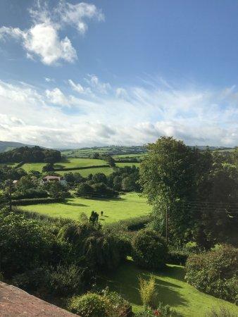 Wootton Courtenay, UK: photo2.jpg