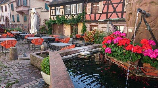Kientzheim, Frankrike: DSC_0619_large.jpg