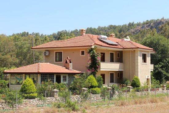 Turgut, ตุรกี: Evcan Apart