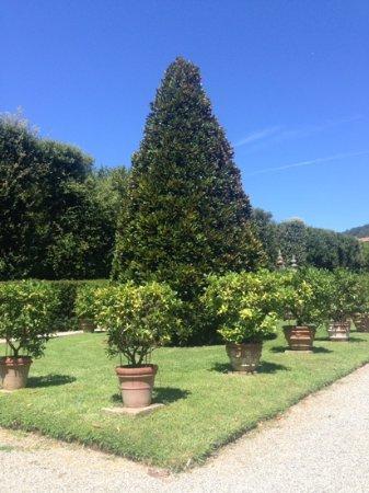 Marlia, Италия: limonaia