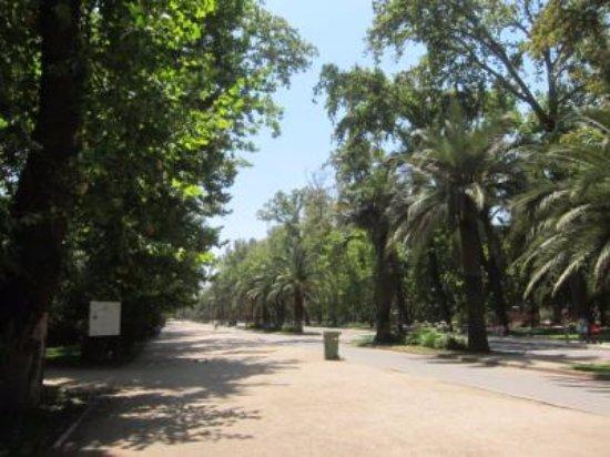 Santiago, Chili: 緑豊か