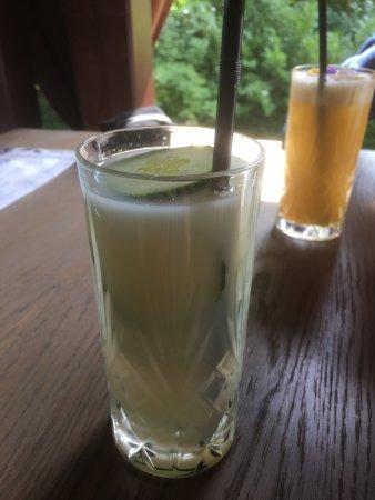 Ville D'Avray, Francia: Cocktails aux Paillettes.  L'elixir végétale et le Green Beast.