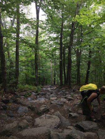 Jaffrey, NH: White Cross Descent