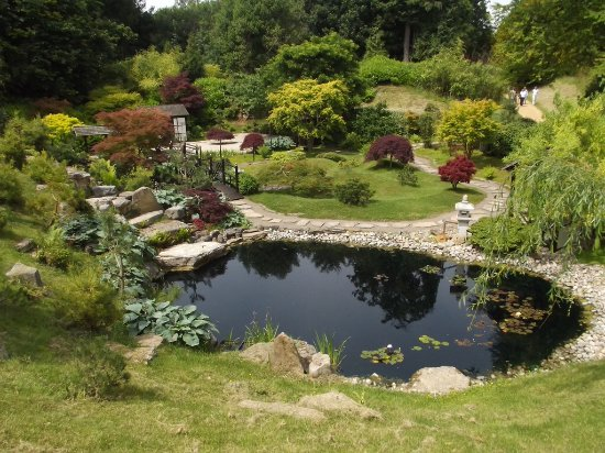 Wimborne Minster, UK: The Japanese Garden at Kingston Lacy. One of the formal garden lay outs in the grounds.
