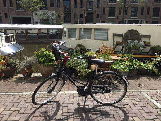 Amsterdam Black Bikes: photo3.jpg