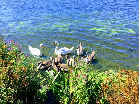 Μόρπεθ, UK: Druridge Bay Country Park