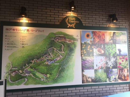 โกเบ, ญี่ปุ่น: photo1.jpg