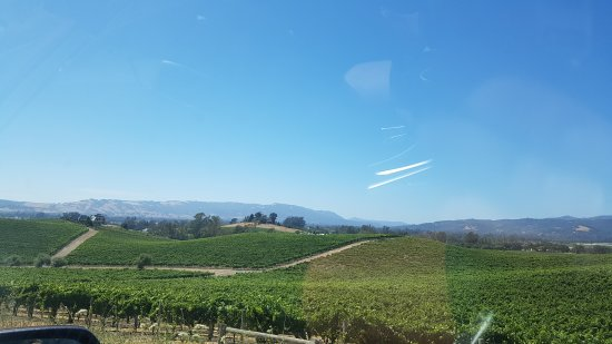 Sonoma Valley: 20170713_152324_large.jpg