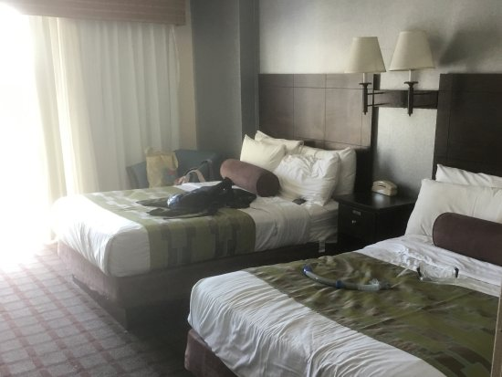 Hotel Monte Carlo: Room