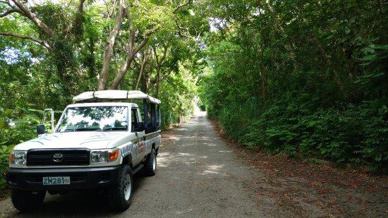 Saint Michael Parish, Barbados: Notre carosse!