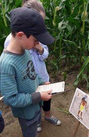 Equemauville, Frankrike: Réflexion jeu enfant