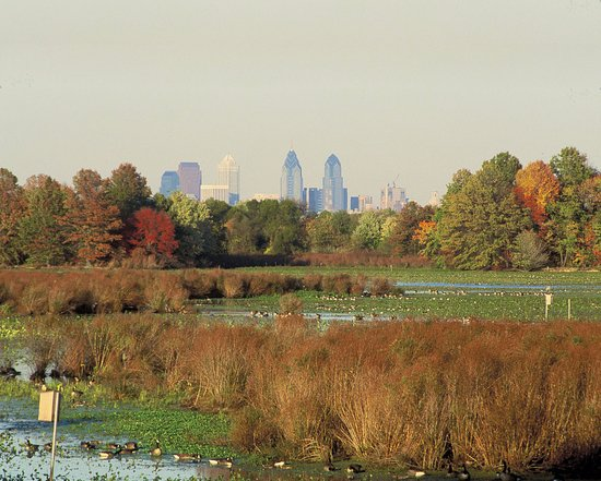‪John Heinz National Wildlife Refuge at Tinicum‬