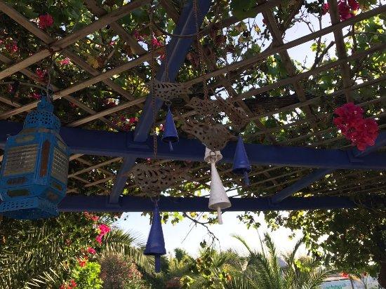 la maison des oiseaux moulay bousselham marokko foto 39 s en reviews tripadvisor. Black Bedroom Furniture Sets. Home Design Ideas