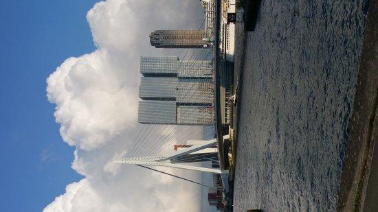 Erasmus Bridge: 20170817_193854_large.jpg