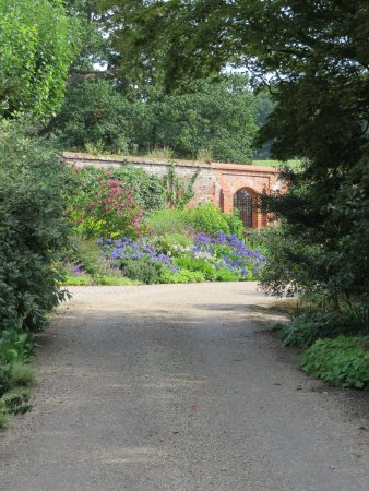 Raveningham, UK: Border with walled garden beyond