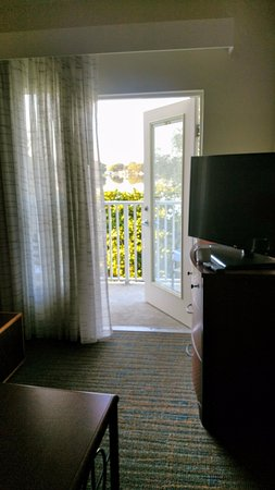 Sebring, FL: I would love to wake up to this view every morning!